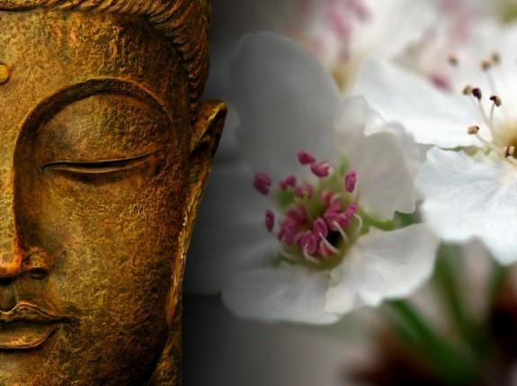 boeddha yin yoga workshop